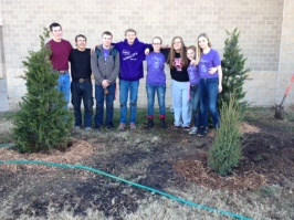MS students plant trees