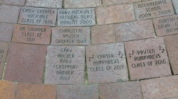Harbor bricks 3