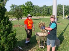 Scouts volunteer to mulch campus trees. June 2018